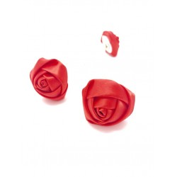 Forcina fiore rosa rossa in...